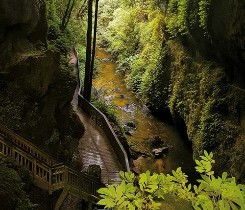 The -Mangapohue -Natural -Bridge -is -steeped -in -history