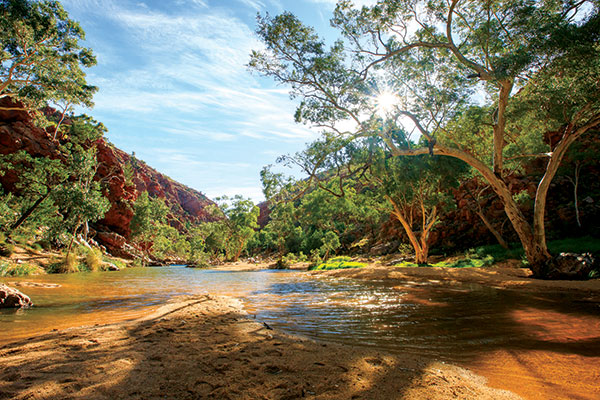Waterhole -in -Australia