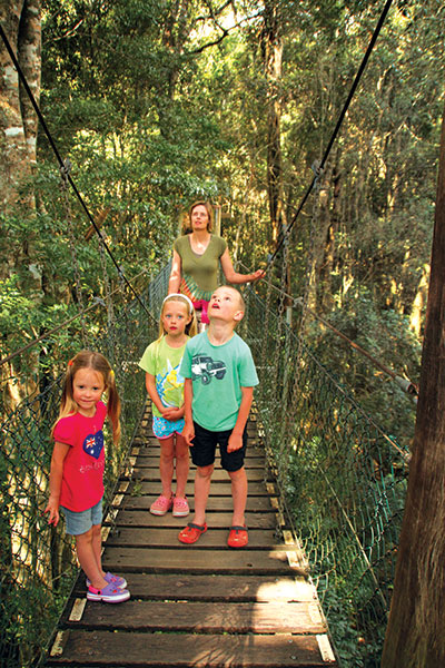 Family -at -a -Treetop -Walk -in -Lamington -NP-QLD