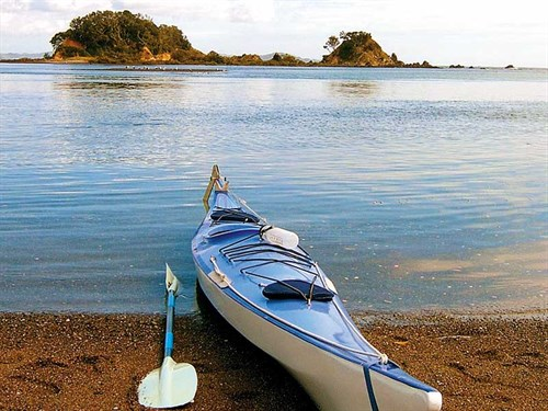 Whelan _3-Taiharuru -Estuary