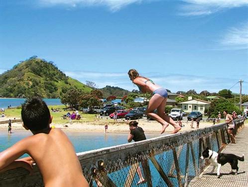 Whelan _14-jumping -from -the -Pataua -footbridge