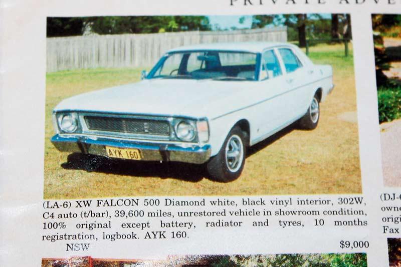 Falcon -xw