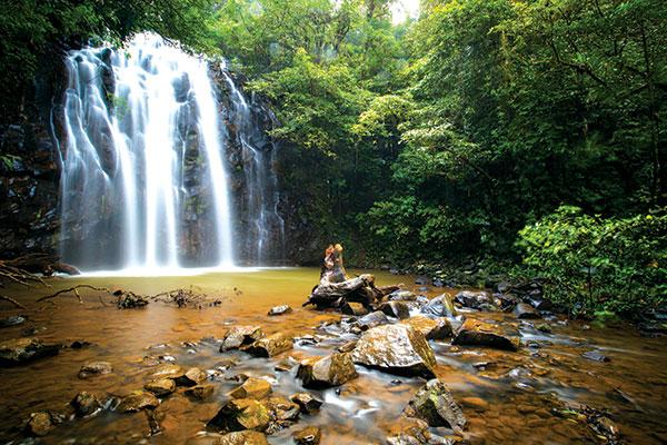 Waterfall -in -Atherton -Tablelands