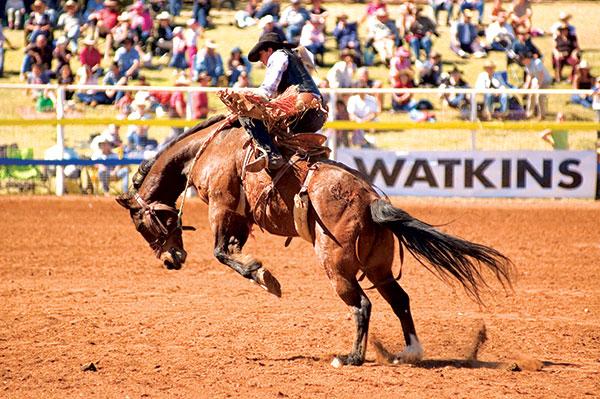 Man -riding -a -horse -at -the -Dirt -'n '-Dust -festival