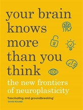 Your -brain.