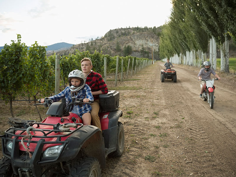 Brothers and sister riding quadbikes and motorcycle on dirt road in vineyard