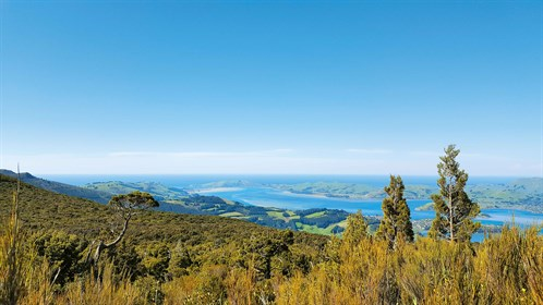 Looking -out -across -the -Otago -Peninsula