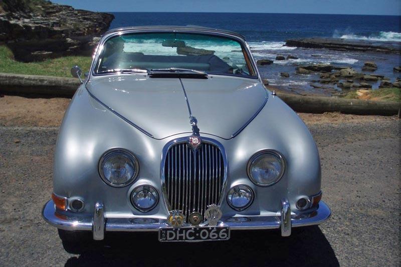 Jaguar -front