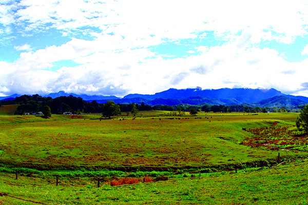 Northern NSW 3
