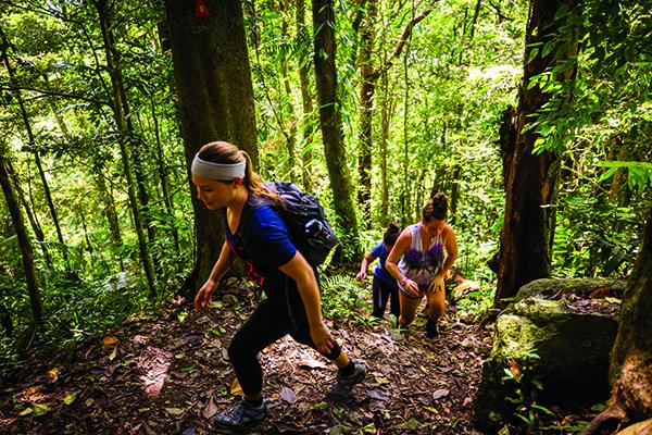 Hiking Mt Sorrow 7