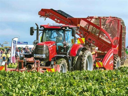 SIAFD-2017-4-Watching -beet -harvesting