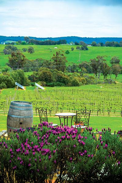 Courabyra -Wines -in -Tumbarumba -NSW