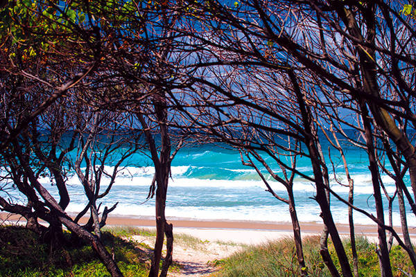 Fingal -Head -beach -2
