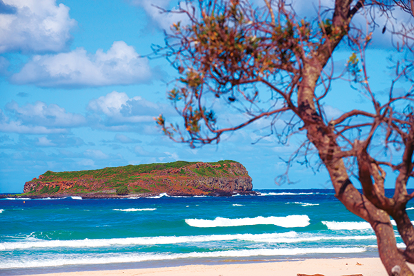 Cook -Island -near -Fingal -Head
