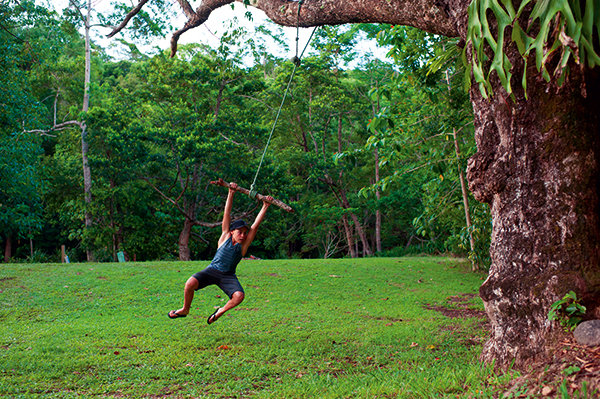 Kid -swinging -on -a -tree -at -Mt -Warning -Rainforest -Park -NSW