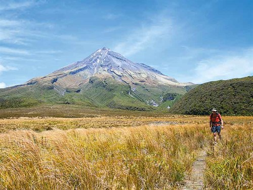 The -Ahukawakawa -Wetlands -section -of -the -Pouakai -Crossing -one -day -walk -on -Mount -Taranaki ---credit -Jeremy -Beckers
