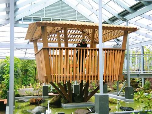 Tree -house