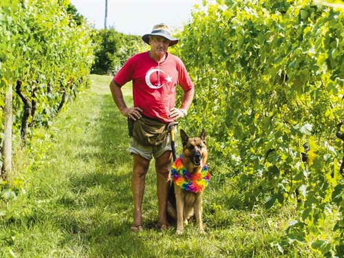 Rod -Mac Ivor -and -friend --checking -on -the -vines