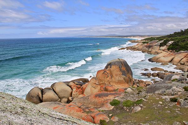 Mt -William -NP-coastline