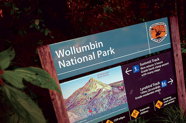Wollumbin -National -Park