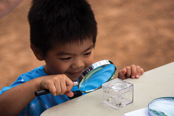 Kid -looking -at -bugs -with -a -magnifying -glass