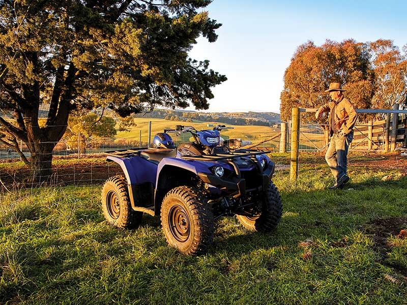 The Yamaha Kodiak 450 ATV gives you plenty to think about
