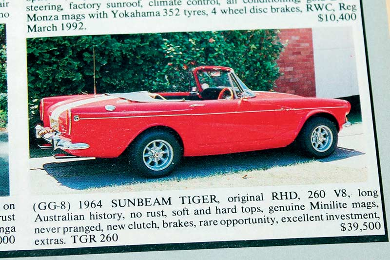 Sunbeam -tiger