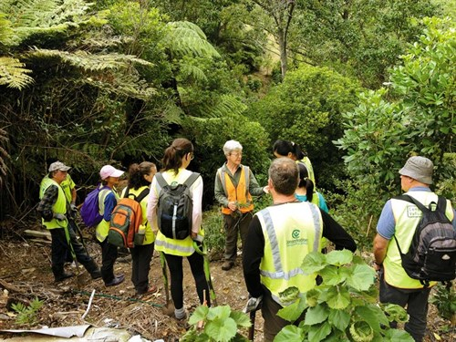 Team -Leaders -induct -and -train -volunteers ---Credit -Conservation -Volunteers -NZ