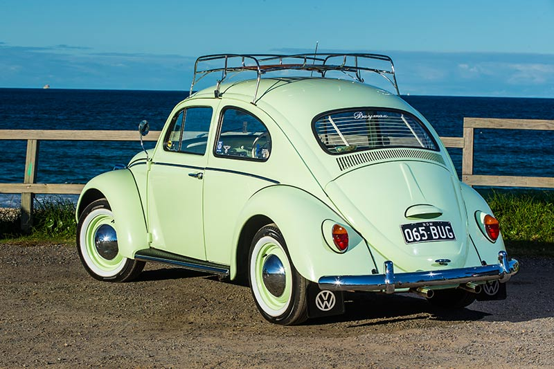 Vw -beetle -rear