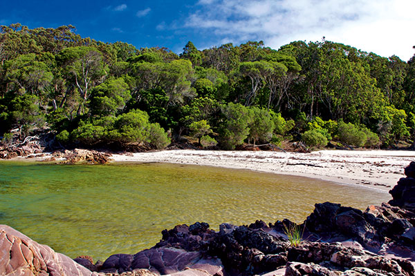 Bittangabee -Bay -protected -beach -near -the -campground