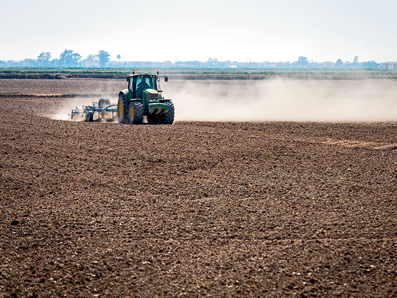 A farmer preparing the land in Ebro delta region, south Catalonia