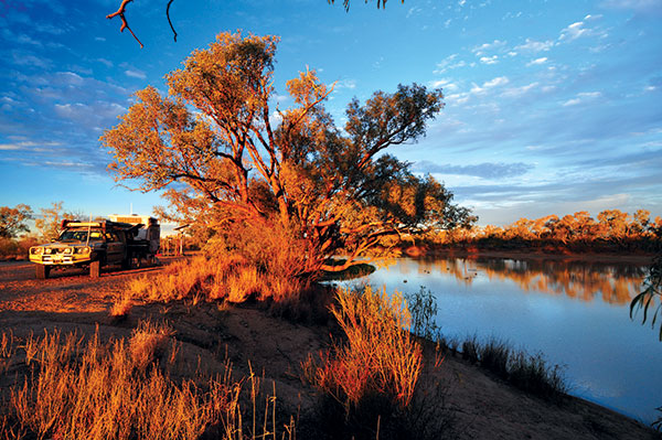 Campsite -on -the -Wilson -River