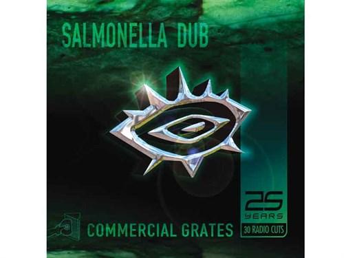 Salmonella -hi -res -2