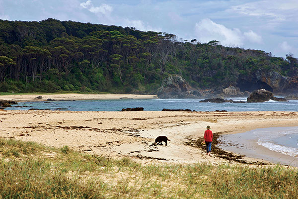 Walking -with -a -dog -at -Mystery -Bay -beach