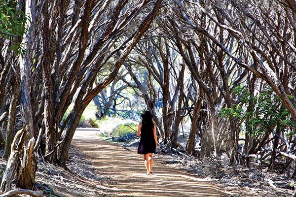 Woman -walking -to -Bournda -Wallagoot -Gap -NSW