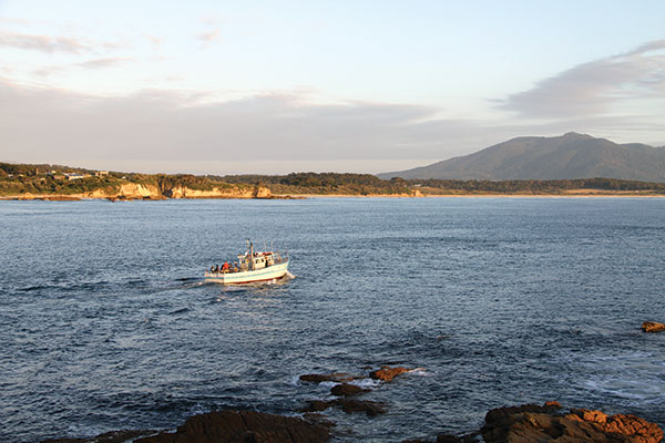 Bermagui -boats -heading -to -sea -with -Mt -Dromondary -in -background