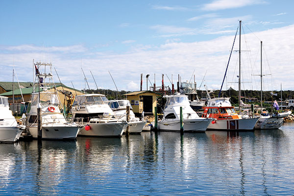 Boats -in -Bermagui -NSW