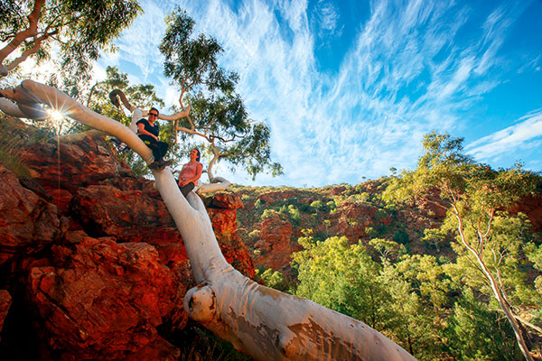Women -sitting -on -the -tree -at -West -Mac Donnell -Ranges -NT
