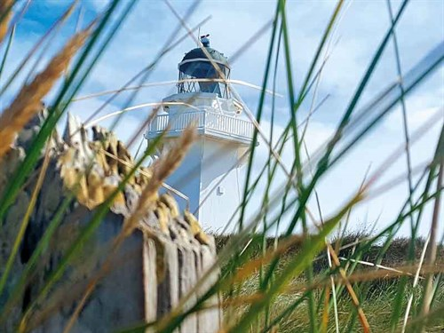 Visit -the -lighthouse -at -Waipapa -Point