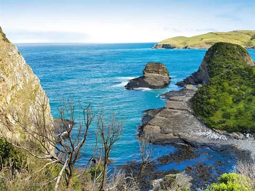 The -views -from -Jack 's -Blowhole -track -are -worth -the -hike