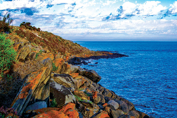 Kangaroo -Island -SA