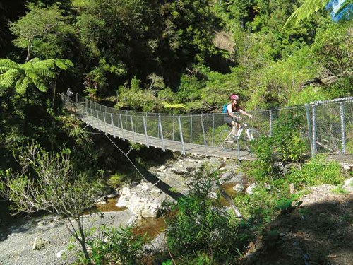 Whelan _13-Swingbridge -on -the -Pakihi -Trail