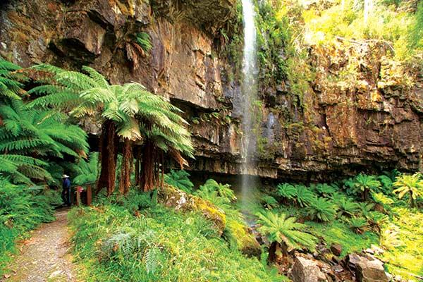 Bindaree -Falls