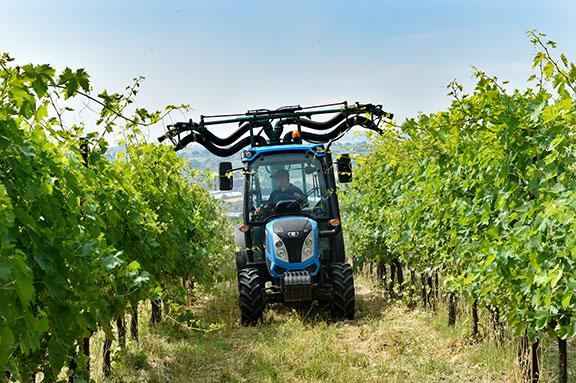 The Landini Rex 4 working at a vineyard