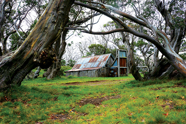 Wallaces -Hut -Bogoing -HP-in -High -Country