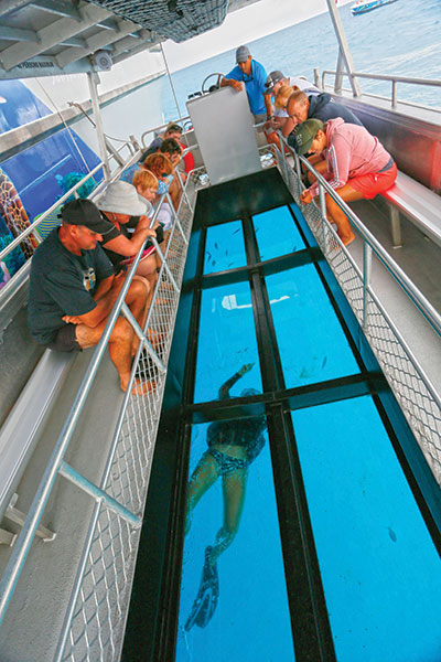 A-diver -cleans -the -glass -bottom -for -the -excursion -boat -Great -Barrier -Reef -QLD