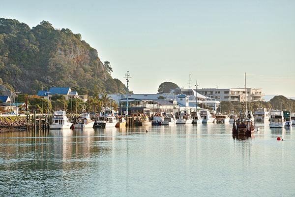 Whakatane -wharf