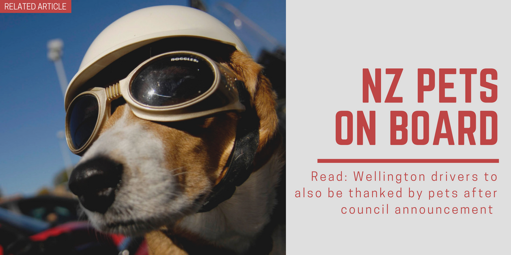 Related article: Wellington drivers to also be thanked by pets after council announcement