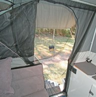 Insect screen in camper