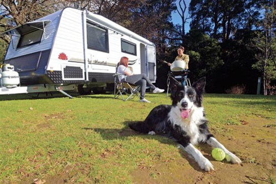 Dog friendly caravan park
